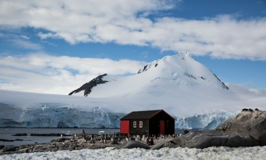 Port Locroy Antarctique