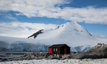 Port Locroy Antarctique