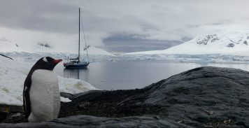Venus en Antarctique