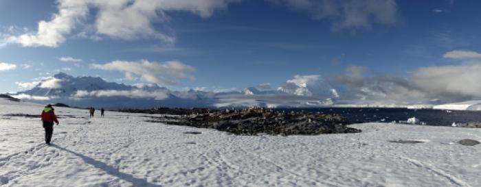 Randonnée sur la neige en Antarctique
